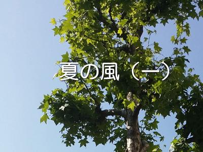 オリジナル小説 夏の風(一)